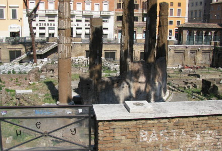 Pielgrzymka do Rzymu – nowe zdjęcia