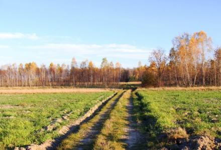 31 sierpnia upływa termin składania wniosków o zwrot podatku akcyzowego za olej napędowy do produkcji rolnej w 2013