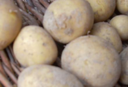 Będzie mniej ziemniaków