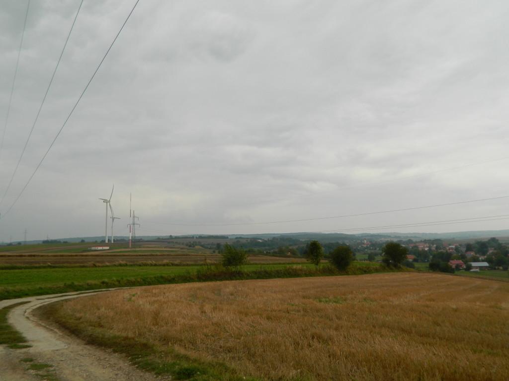 Orzechowce 2013 032