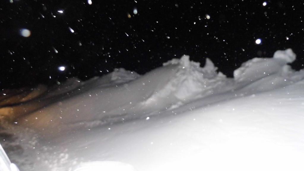 Glinnik – koniec stycznia. Zdjęcia Sylwii Zlot