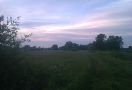 Przyroda okolic Wielkiego w obiektywie Natalii Skorupskiej