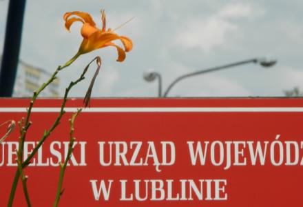 Abramów – Michów – Ponad 700 podpisów pod petycją do Wojewody przeciwko budowie elektrowni wiatrowej.