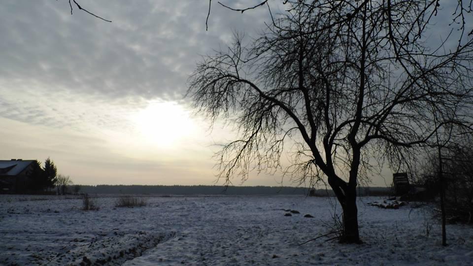 Początek roku w obrazkach – fotografie Sylwii Zlot