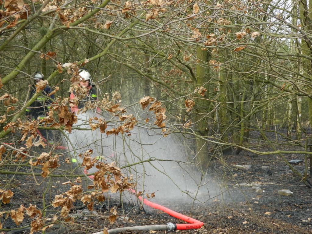 Uwaga! suche trawy. Pożar młodnika w okolicach Rudna