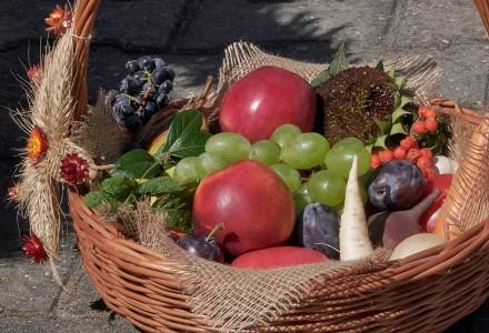 Sprzedaż żywności przez rolników