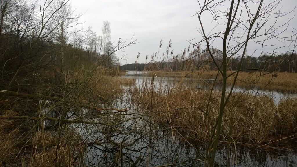 Orlicz i okolice – świąteczny spacer
