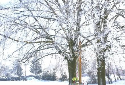 Ciotcza zimową porą…